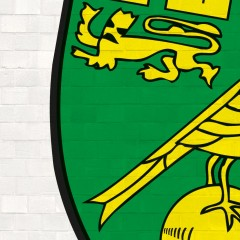 Norwich City's Premier League Player of the Month for January
